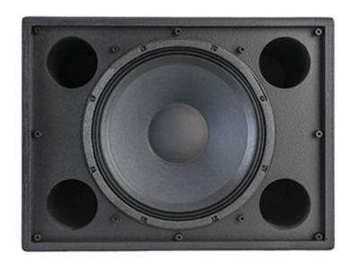 Klipsch 12 Inch Commercial Monitor Multi Angle Subwoofer(Each) - K115WII