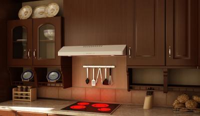 "30"" Faber  Under Cabinet Range Hood - LEVA30WH300-B"