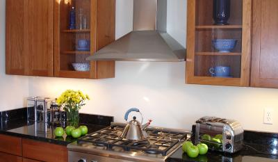 """30"""" Faber Decorative Collection Synthesis Wall-Mount Chimney Hood - SYNT30SS300"""