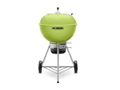 "24"" Weber Charcoal Grill with Built-In Thermometer in Spring Green - Master-Touch (SG)"