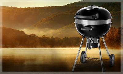 Napoleon Pro Charcoal Kettle Grill PRO22K-LEG-2